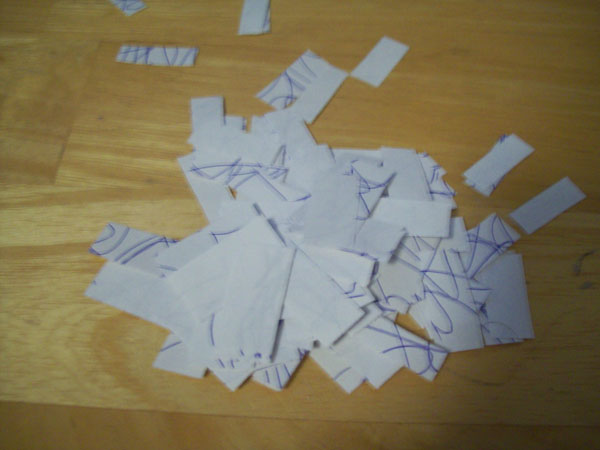 A pile of paper segemnts.